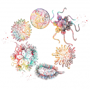 Boli infecțioase